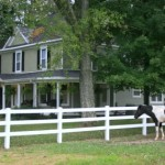 greenrose-of-raus-bnb-horses-lynchburg-tn