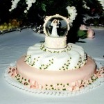 southern-perks-wedding-cake-lynchburg-tn